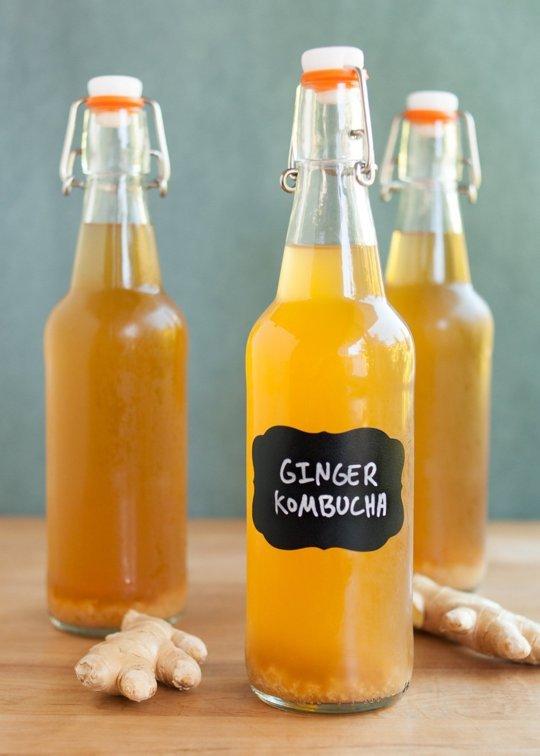 kombucha drinks