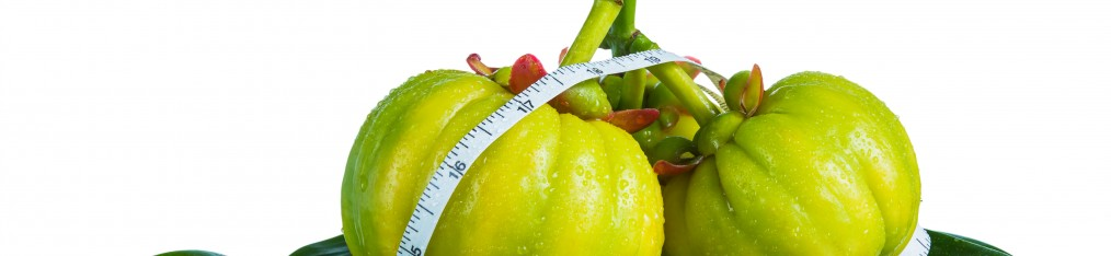 dr oz suggests garcinia cambogia
